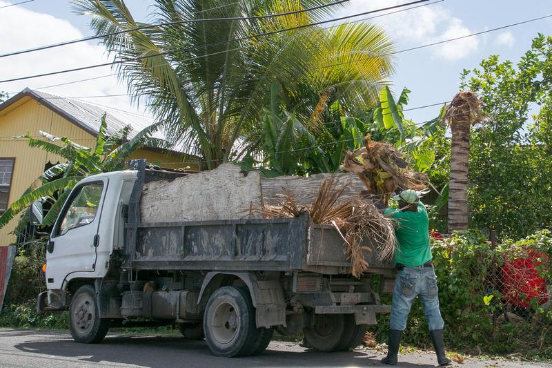 Loading palm leaves