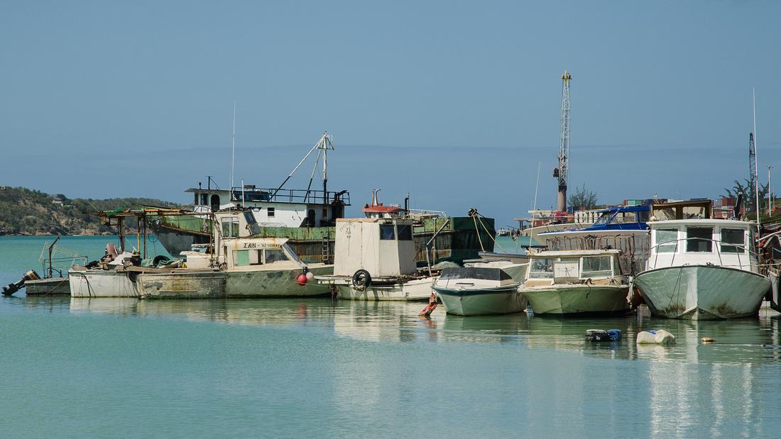 Fishing boats, St John's